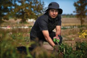 Man in a hat kneeling in a garden.