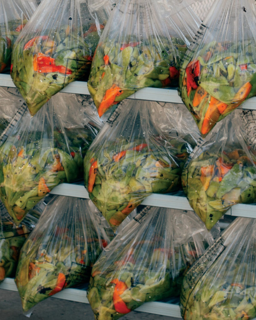 Chiles in plastic bags stacked on a metal cart